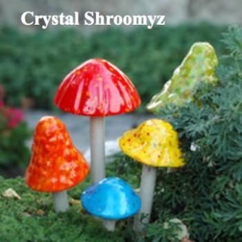 Crystal Shroomzy
